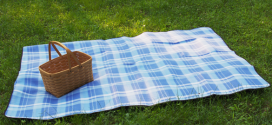 Extra Large Picnic Blanket